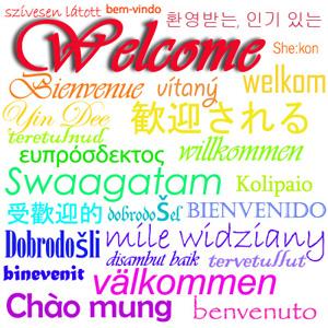 Language Specific Organizaitons